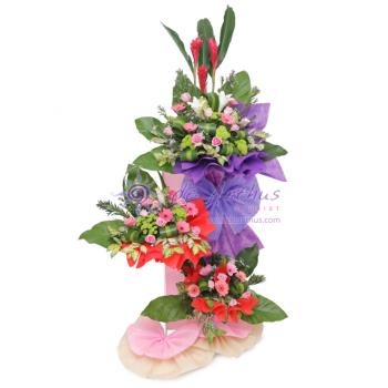 USJ Congratulations Flowers