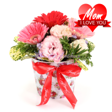 Mother's Day Gerbera & Eustoma Canister Bouquet