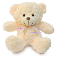 "Add On 8"" Cutie Bear"