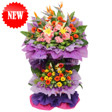 USJ Congratulations Flowers Deluxe Large